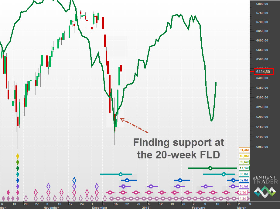 Support at the 20-week FLD